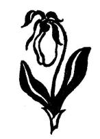 Garden Club of Concord Logo
